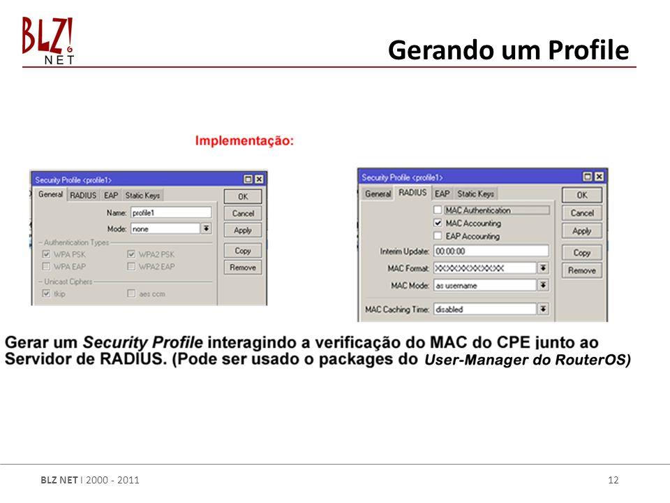 BLZ NET I 2000 - 2011 12 Gerando um Profile