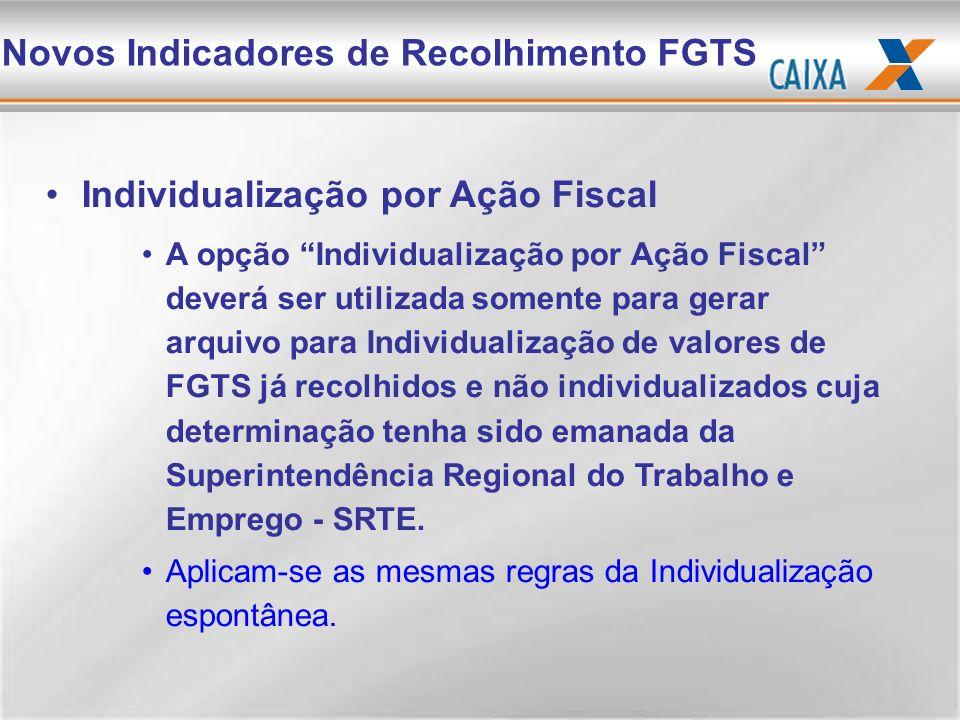 Individualização por Ação Fiscal A opção Individualização por Ação Fiscal deverá ser utilizada somente para gerar arquivo para Individualização de val