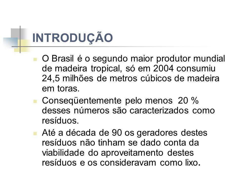 INTRODUÇÃO O Brasil é o segundo maior produtor mundial de madeira tropical, só em 2004 consumiu 24,5 milhões de metros cúbicos de madeira em toras.