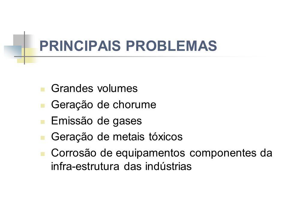 PRINCIPAIS PROBLEMAS Grandes volumes Geração de chorume Emissão de gases Geração de metais tóxicos Corrosão de equipamentos componentes da infra-estrutura das indústrias