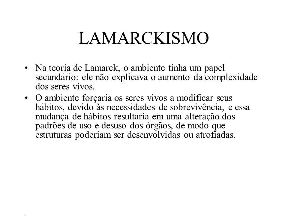 LAMARCKISMO Na teoria de Lamarck, o ambiente tinha um papel secundário: ele não explicava o aumento da complexidade dos seres vivos. O ambiente forçar