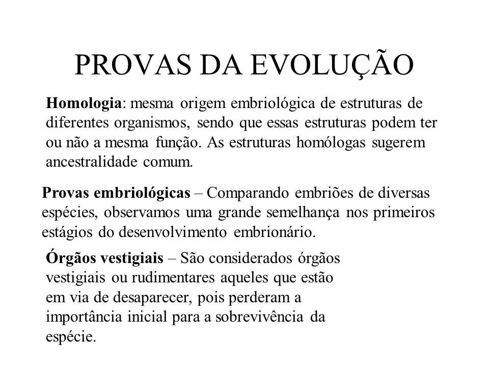PROVAS DA EVOLUÇÃO Homologia: mesma origem embriológica de estruturas de diferentes organismos, sendo que essas estruturas podem ter ou não a mesma fu