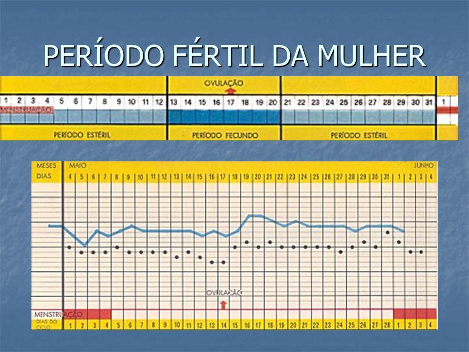 PERÍODO FÉRTIL DA MULHER