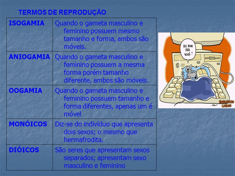 TERMOS DE REPRODUÇÃO ISOGAMIAQuando o gameta masculino e feminino possuem mesmo tamanho e forma, ambos são móveis. ANIOGAMIAQuando o gameta masculino