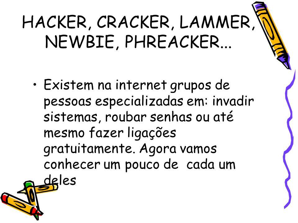 HACKER, CRACKER, LAMMER, NEWBIE, PHREACKER... Existem na internet grupos de pessoas especializadas em: invadir sistemas, roubar senhas ou até mesmo fa