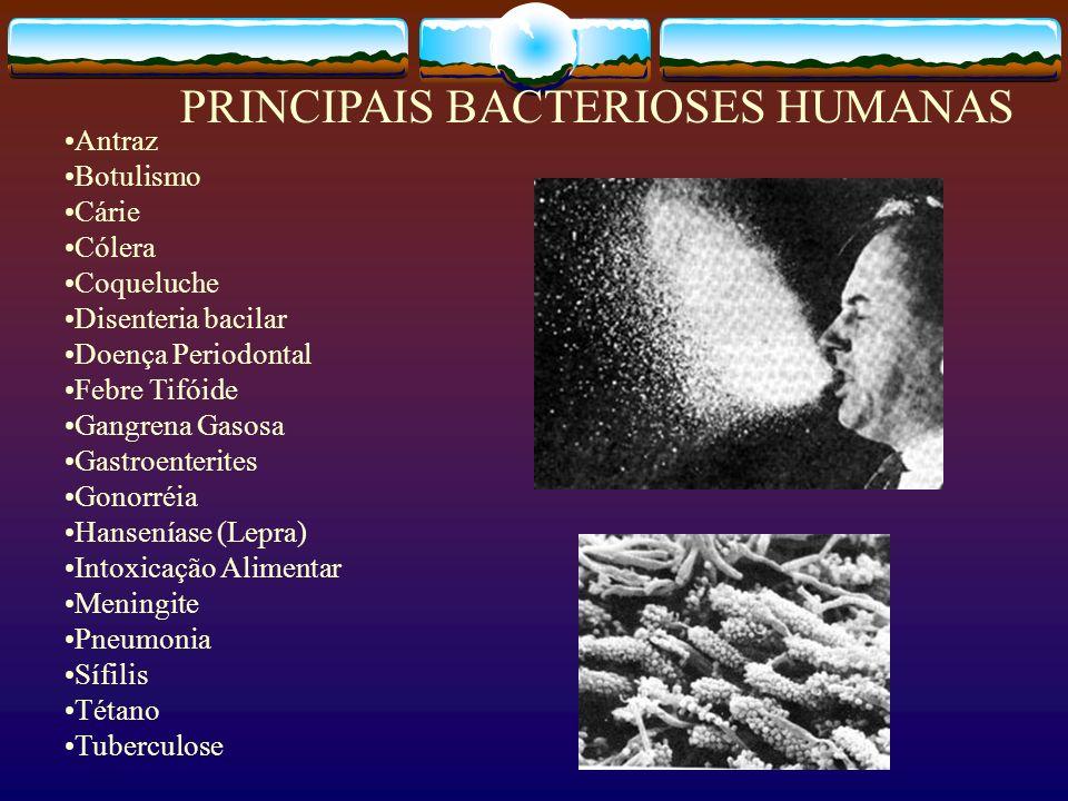 Antraz Botulismo Cárie Cólera Coqueluche Disenteria bacilar Doença Periodontal Febre Tifóide Gangrena Gasosa Gastroenterites Gonorréia Hanseníase (Lep