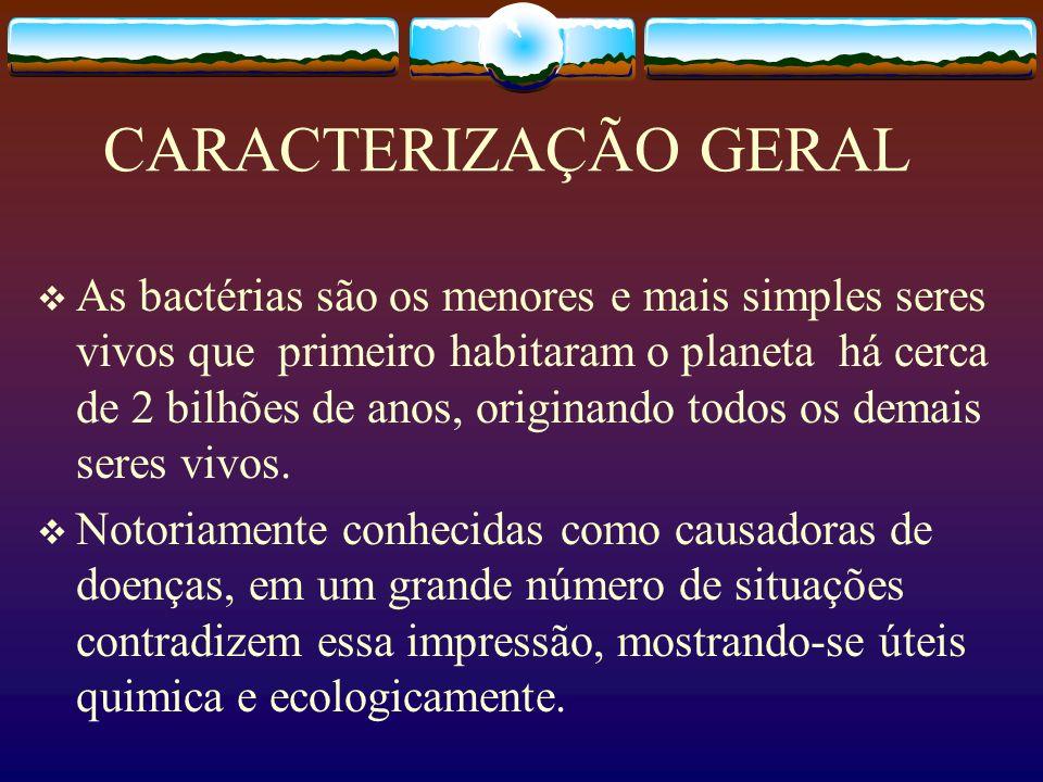 CARACTERIZAÇÃO GERAL As bactérias são os menores e mais simples seres vivos que primeiro habitaram o planeta há cerca de 2 bilhões de anos, originando