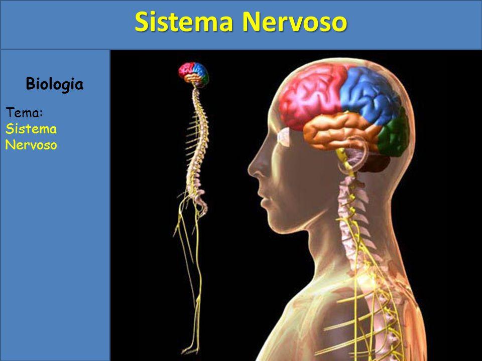 Biologia Tema: Sistema Nervoso