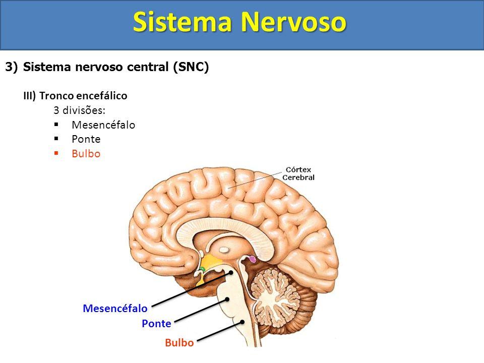 Sistema Nervoso 3)Sistema nervoso central (SNC) III) Tronco encefálico 3 divisões: Mesencéfalo Ponte Bulbo Mesencéfalo Ponte Bulbo