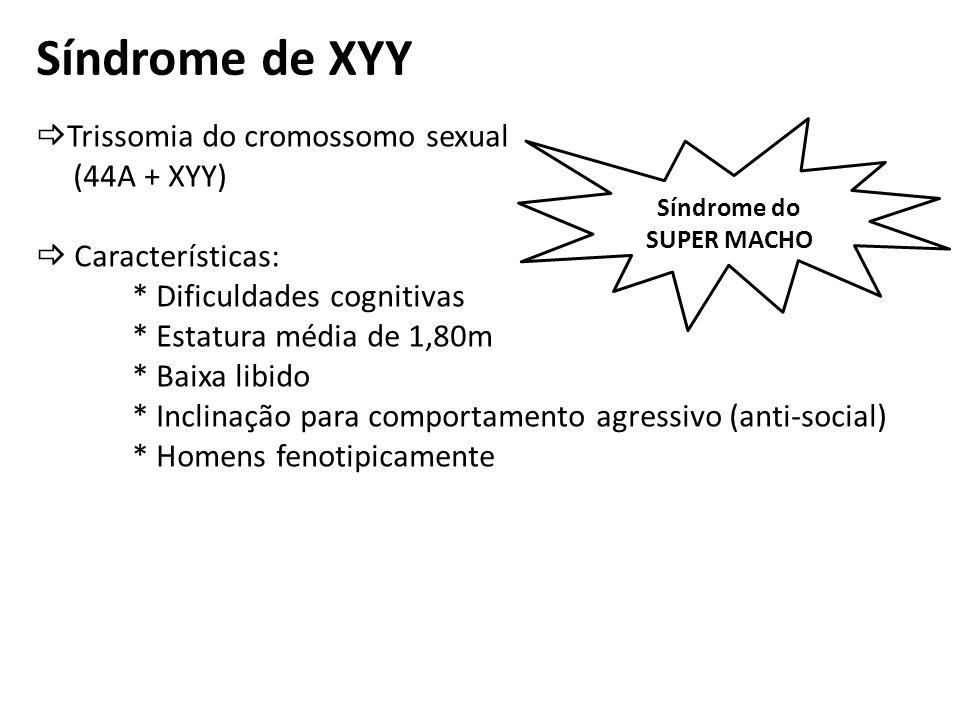 Síndrome de XYY Trissomia do cromossomo sexual (44A + XYY) Características: * Dificuldades cognitivas * Estatura média de 1,80m * Baixa libido * Incli