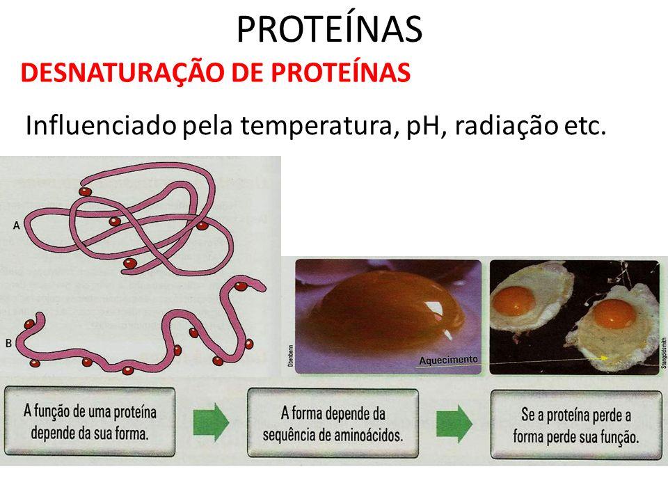PROTEÍNAS DESNATURAÇÃO DE PROTEÍNAS Influenciado pela temperatura, pH, radiação etc.