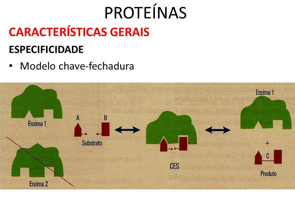 CARACTERÍSTICAS GERAIS ESPECIFICIDADE Modelo chave-fechadura