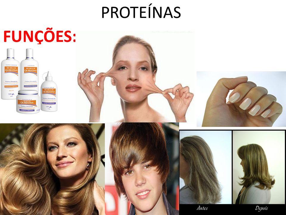 PROTEÍNAS FUNÇÕES: