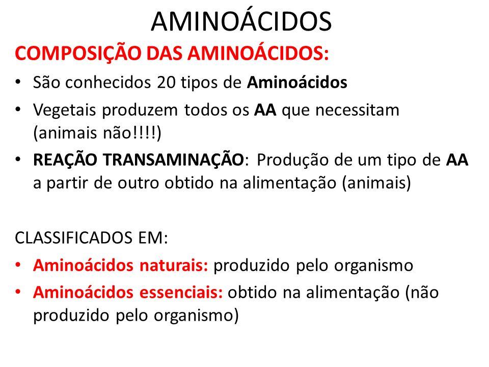 AMINOÁCIDOS COMPOSIÇÃO DAS AMINOÁCIDOS: São conhecidos 20 tipos de Aminoácidos Vegetais produzem todos os AA que necessitam (animais não!!!!) REAÇÃO T