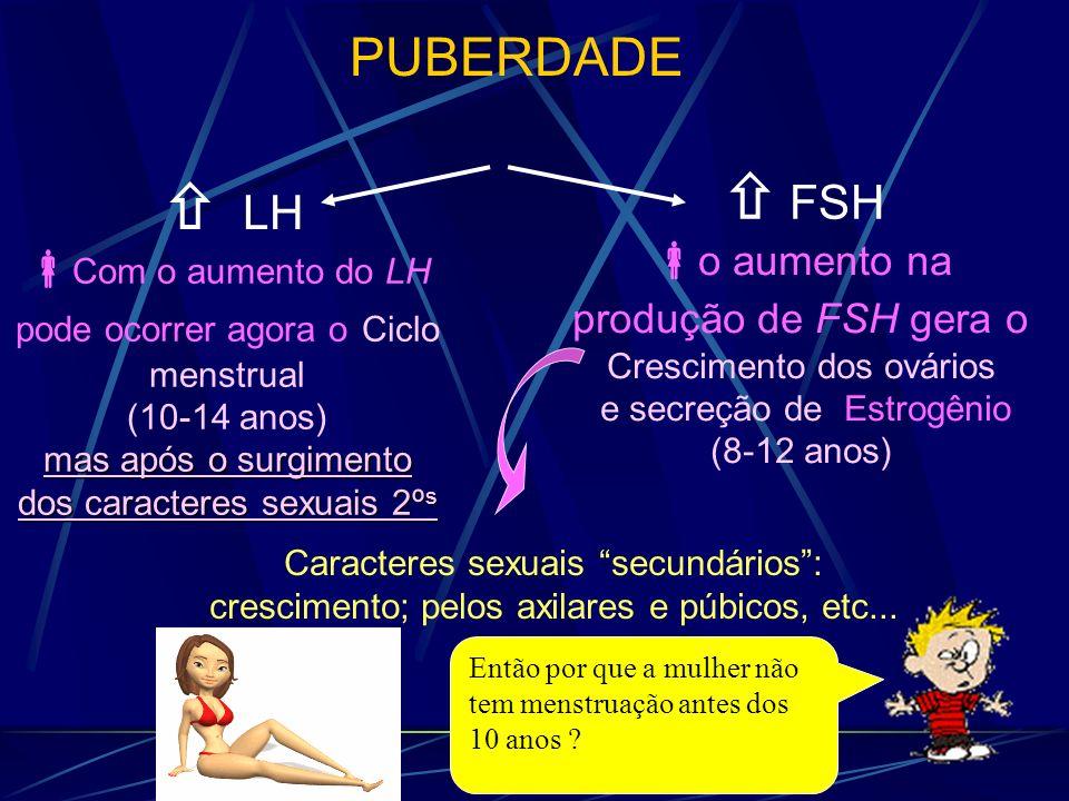 LH Caracteres sexuais secundários: crescimento; pelos axilares e púbicos, etc... PUBERDADE FSH Com o aumento do LH pode ocorrer agora o Ciclo menstrua