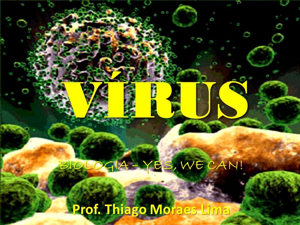 HISTÓRICO Descobertos por Ivanovsky em 1892 ao estudar a doença do mosaico do tabaco; Ivanovsky filtrou um extrato de folhas do tabaco infectadas para isolar a bactéria, que para sua surpresa passou pelo filtro; Com o avanço do microscópio, na década de 50 foi verificado que os vírus eram diferentes de bactérias e outros seres