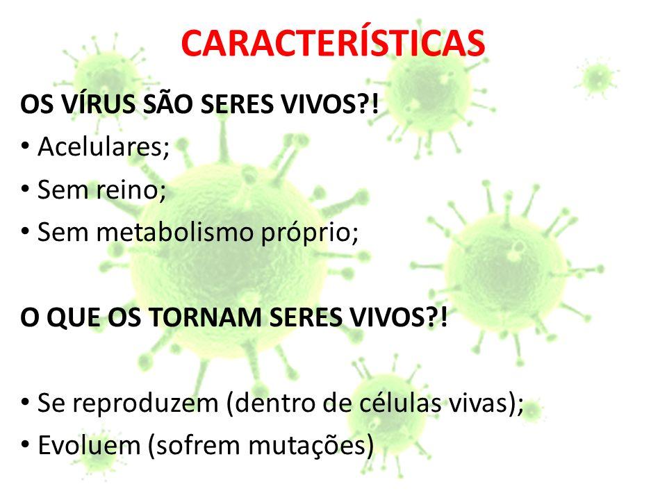 CARACTERÍSTICAS Acelulares; Parasitas Intracelulares Obrigatório; Fora da célula hospedeira o vírus se cristaliza ficando inativo.