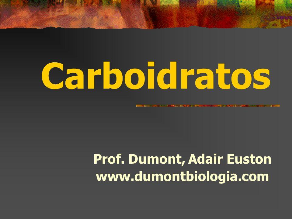 Carboidratos Prof. Dumont, Adair Euston www.dumontbiologia.com