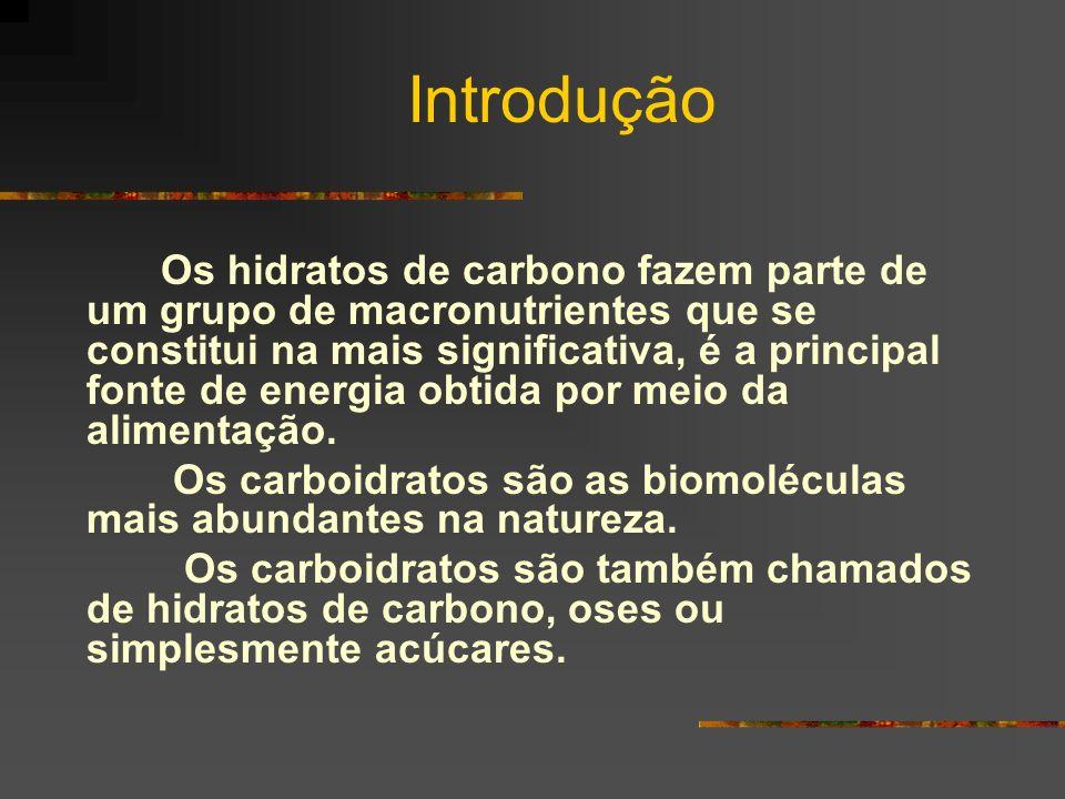 Introdução Os hidratos de carbono fazem parte de um grupo de macronutrientes que se constitui na mais significativa, é a principal fonte de energia ob