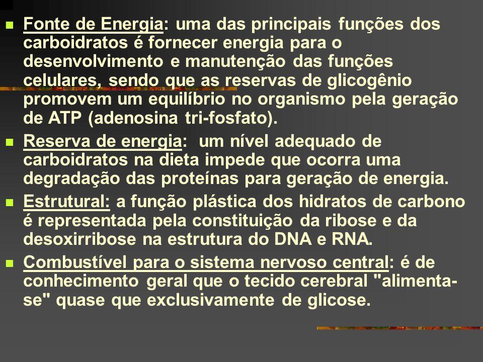 Fonte de Energia: uma das principais funções dos carboidratos é fornecer energia para o desenvolvimento e manutenção das funções celulares, sendo que