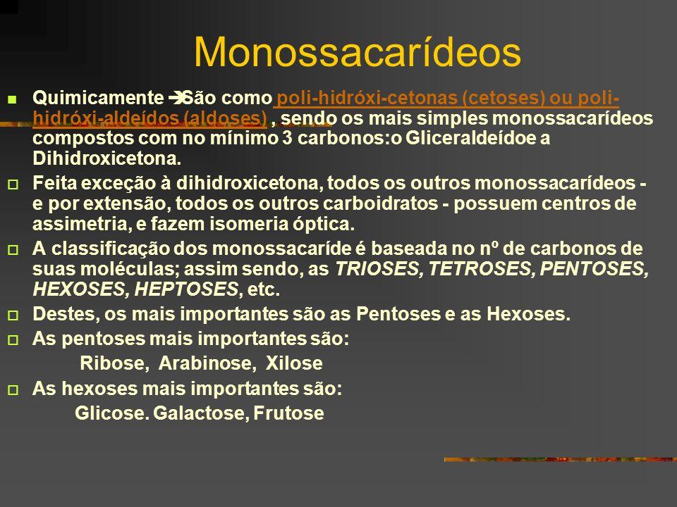 Monossacarídeos Quimicamente São como poli-hidróxi-cetonas (cetoses) ou poli- hidróxi-aldeídos (aldoses), sendo os mais simples monossacarídeos compos