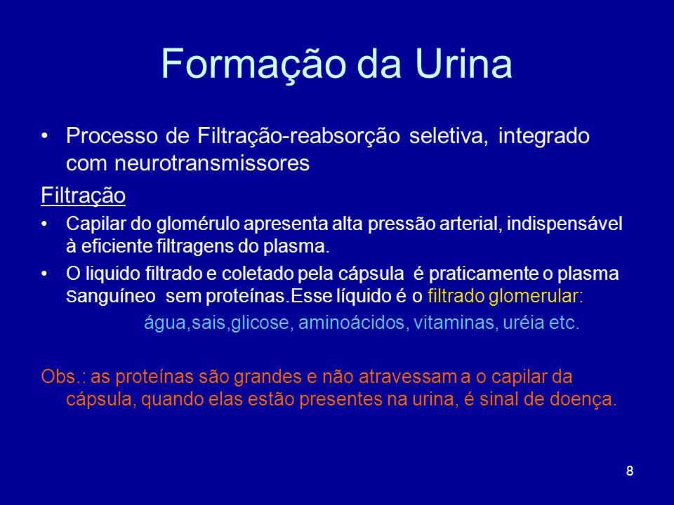 8 Formação da Urina Processo de Filtração-reabsorção seletiva, integrado com neurotransmissores Filtração Capilar do glomérulo apresenta alta pressão