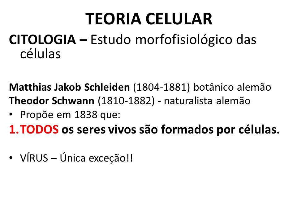 TEORIA CELULAR CITOLOGIA – Estudo morfofisiológico das células Matthias Jakob Schleiden (1804-1881) botânico alemão Theodor Schwann (1810-1882) - natu
