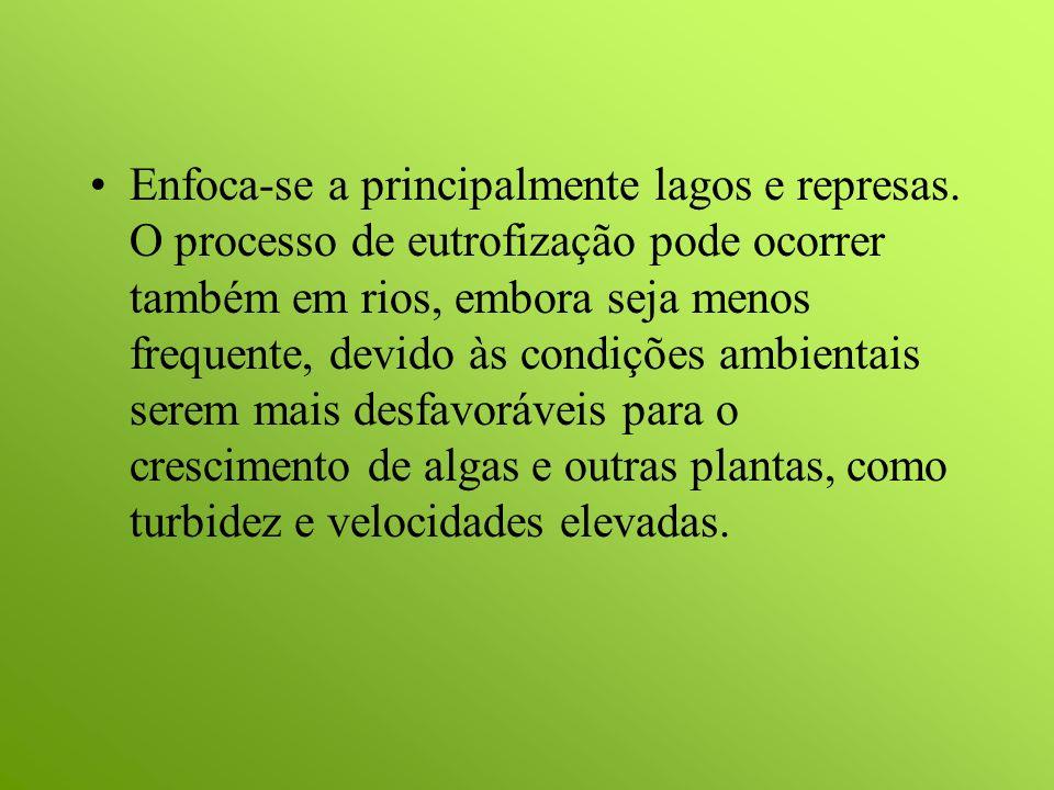 Efeitos da Eutrofização São os seguintes os principais efeitos indesejáveis da eutrofização.
