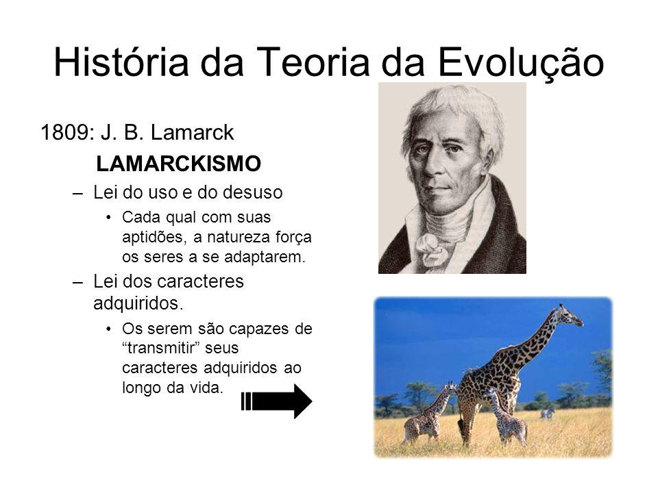História da Teoria da Evolução 1809: J. B. Lamarck LAMARCKISMO –Lei do uso e do desuso Cada qual com suas aptidões, a natureza força os seres a se ada