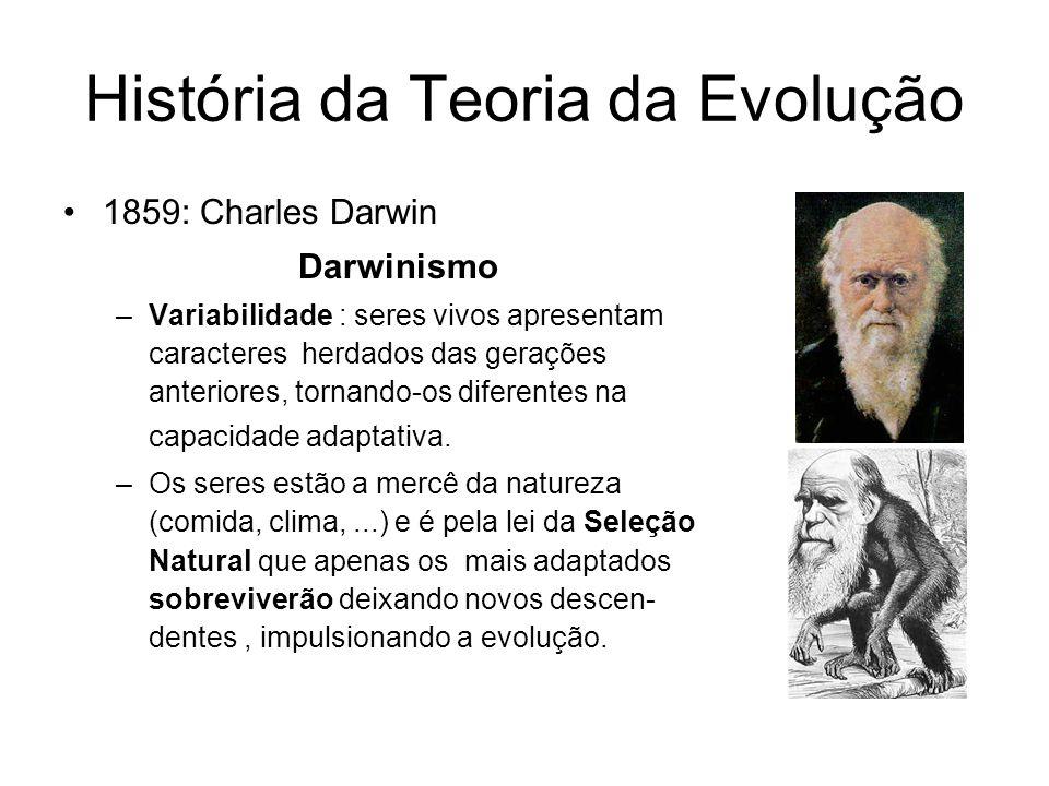 História da Teoria da Evolução 1859: Charles Darwin Darwinismo –Variabilidade : seres vivos apresentam caracteres herdados das gerações anteriores, to