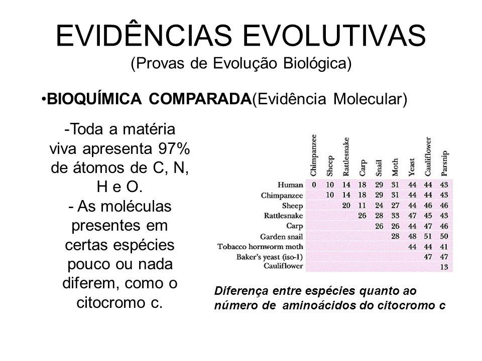 EVIDÊNCIAS EVOLUTIVAS (Provas de Evolução Biológica) BIOQUÍMICA COMPARADA(Evidência Molecular) -Toda a matéria viva apresenta 97% de átomos de C, N, H