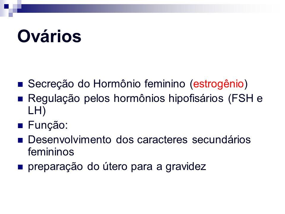 Ovários Secreção do Hormônio feminino (estrogênio) Regulação pelos hormônios hipofisários (FSH e LH) Função: Desenvolvimento dos caracteres secundário