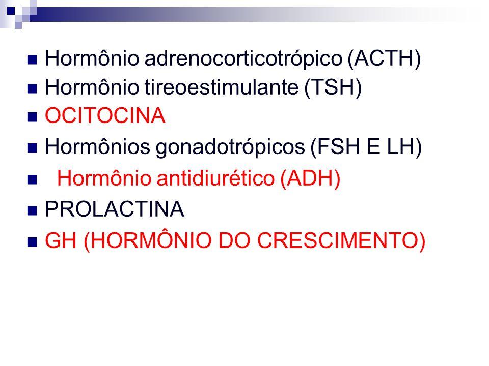 Hormônio adrenocorticotrópico (ACTH) Hormônio tireoestimulante (TSH) OCITOCINA Hormônios gonadotrópicos (FSH E LH) Hormônio antidiurético (ADH) PROLAC