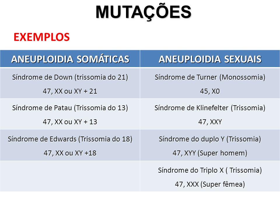 MUTAÇÕES MUTAÇÕES EXEMPLOS ANEUPLOIDIA SOMÁTICAS ANEUPLOIDIA SEXUAIS Síndrome de Down (trissomia do 21) 47, XX ou XY + 21 Síndrome de Turner (Monossomia) 45, X0 Síndrome de Patau (Trissomia do 13) 47, XX ou XY + 13 Síndrome de Klinefelter (Trissomia) 47, XXY Síndrome de Edwards (Trissomia do 18) 47, XX ou XY +18 Síndrome do duplo Y (Trissomia) 47, XYY (Super homem) Síndrome do Triplo X ( Trissomia) 47, XXX (Super fêmea)