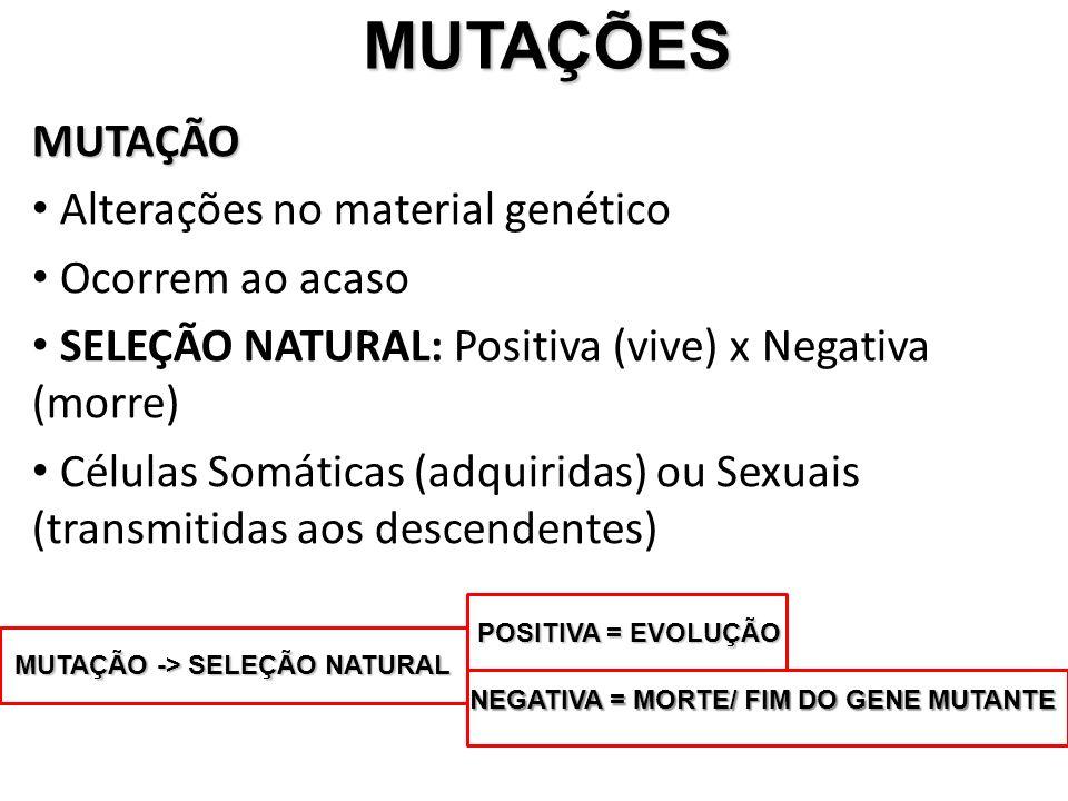 MUTAÇÕES MUTAÇÕES MUTAÇÃO Alterações no material genético Ocorrem ao acaso SELEÇÃO NATURAL: Positiva (vive) x Negativa (morre) Células Somáticas (adquiridas) ou Sexuais (transmitidas aos descendentes) MUTAÇÃO -> SELEÇÃO NATURAL POSITIVA = EVOLUÇÃO NEGATIVA = MORTE/ FIM DO GENE MUTANTE