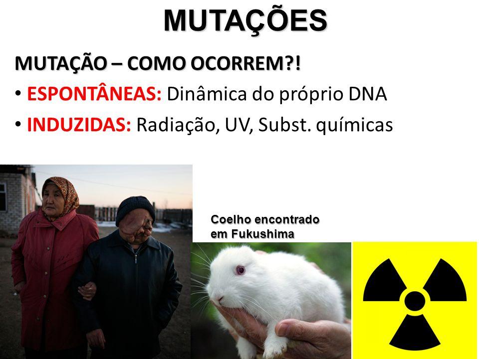 MUTAÇÕES MUTAÇÕES MUTAÇÃO – COMO OCORREM?! ESPONTÂNEAS: Dinâmica do próprio DNA INDUZIDAS: Radiação, UV, Subst. químicas Coelho encontrado em Fukushim