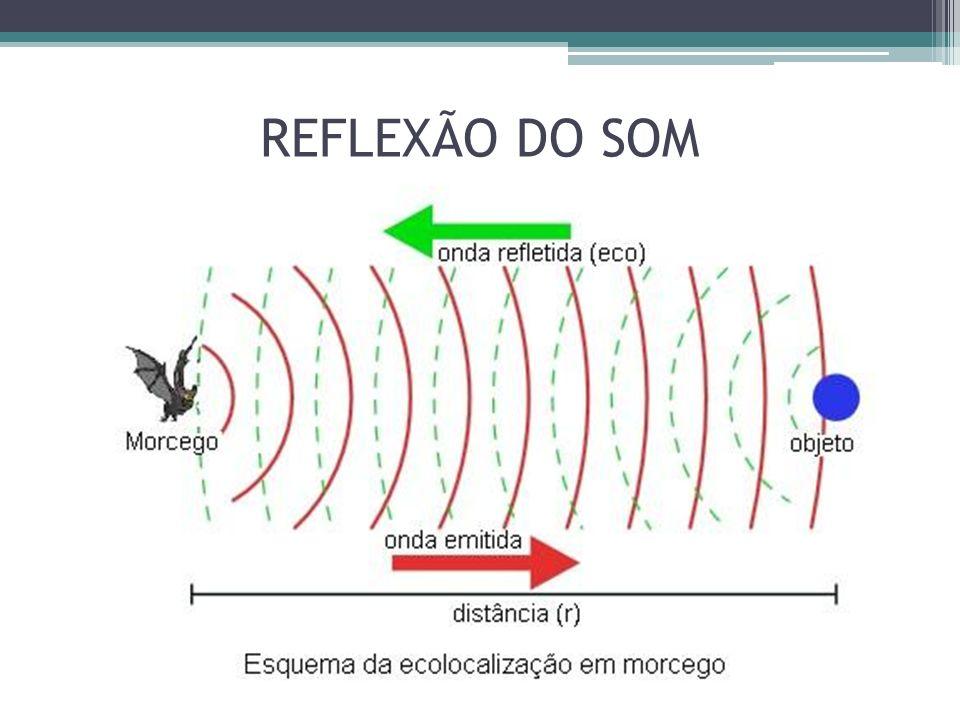 REFLEXÃO DO SOM