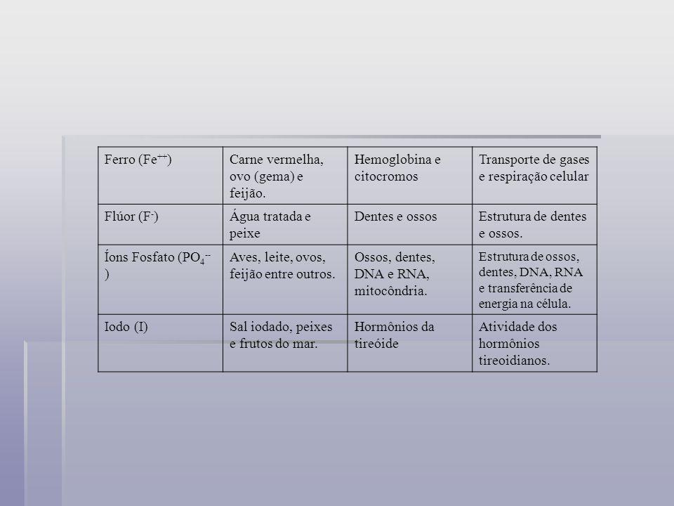Ferro (Fe ++ )Carne vermelha, ovo (gema) e feijão. Hemoglobina e citocromos Transporte de gases e respiração celular Flúor (F - )Água tratada e peixe