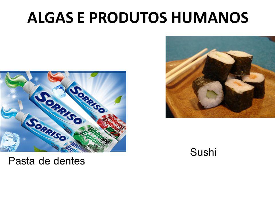 ALGAS E PRODUTOS HUMANOS Sushi Pasta de dentes