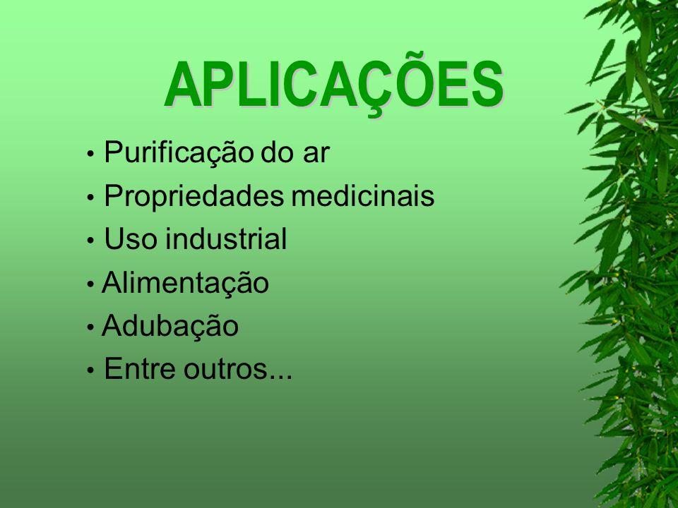 Purificação do ar Propriedades medicinais Uso industrial Alimentação Adubação Entre outros...