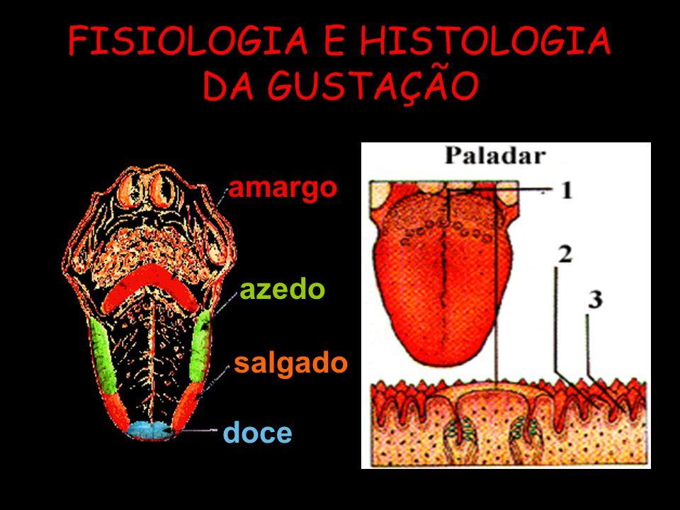 FISIOLOGIA E HISTOLOGIA DA GUSTAÇÃO amargo azedo salgado doce
