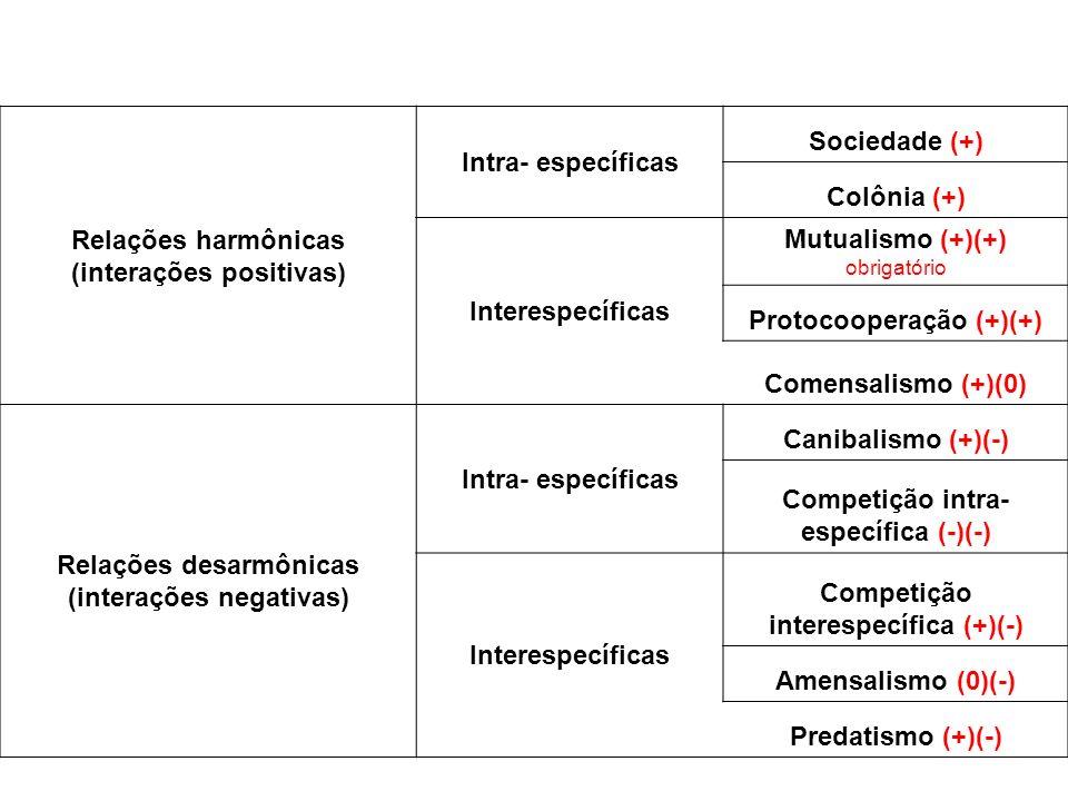 Relações harmônicas (interações positivas) Intra- específicas Sociedade (+) Colônia (+) Interespecíficas Mutualismo (+)(+) obrigatório Protocooperação