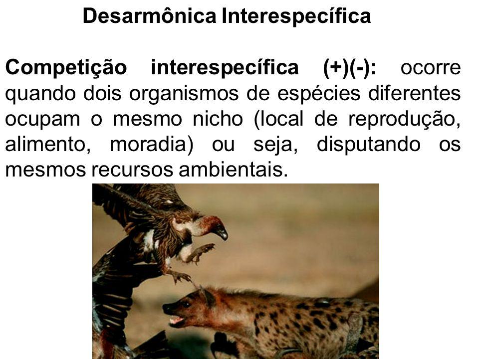 Competição interespecífica Princípio da exclusão competitiva ou princípio de Gause: 2 espécies ou mais que competem por recursos limitados do ambiente não podem coexistir no mesmo lugar.