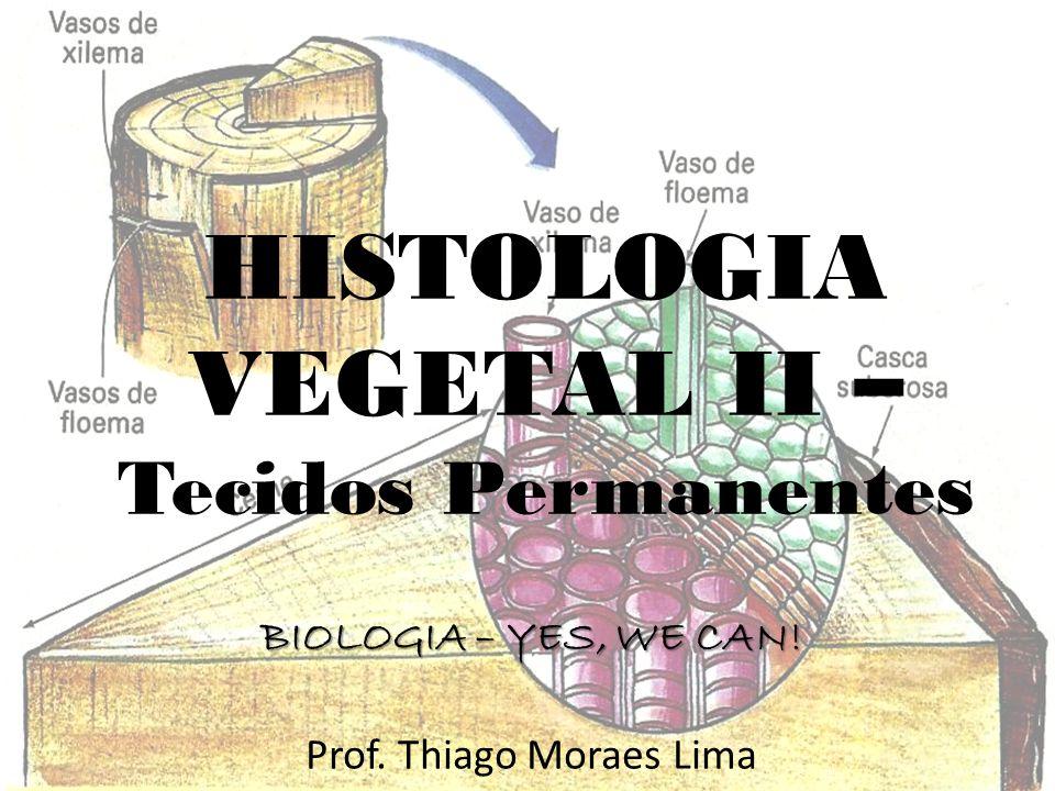 HISTOLOGIA VEGETAL II – Tecidos Permanentes BIOLOGIA – YES, WE CAN! Prof. Thiago Moraes Lima