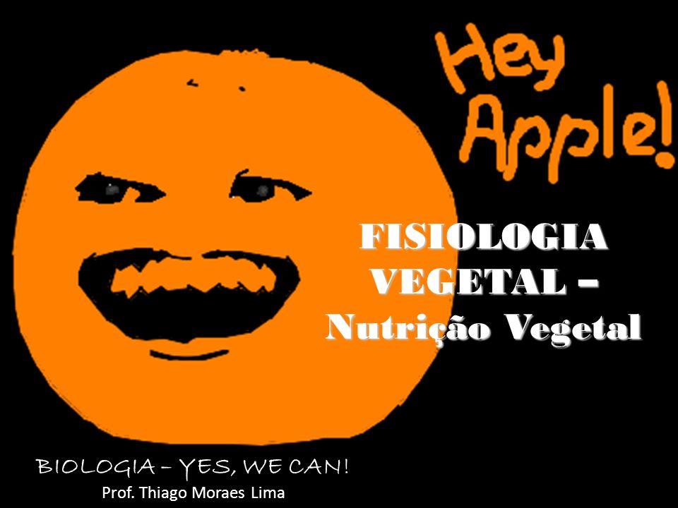 FISIOLOGIA VEGETAL – Nutrição Vegetal BIOLOGIA – YES, WE CAN! Prof. Thiago Moraes Lima