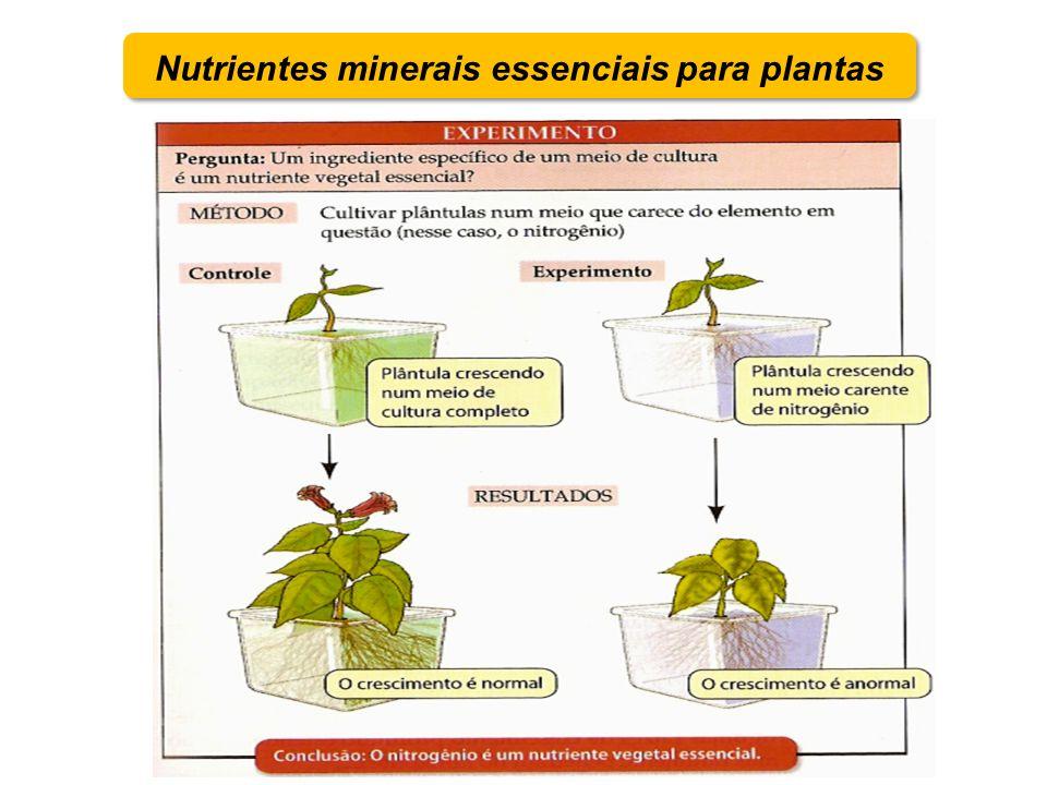 Macronutrientes e micronutrientes –Macronutriente necessário em concentrações de pelo menos 1 g / kg de matéria seca –Micronutriente necessário em concentrações de pelo menos 100 mg / kg de matéria seca Nutrientes minerais essenciais para plantas