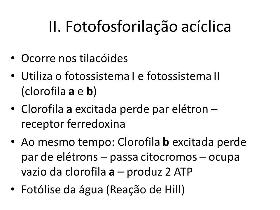 Fotofosforilação acíclica