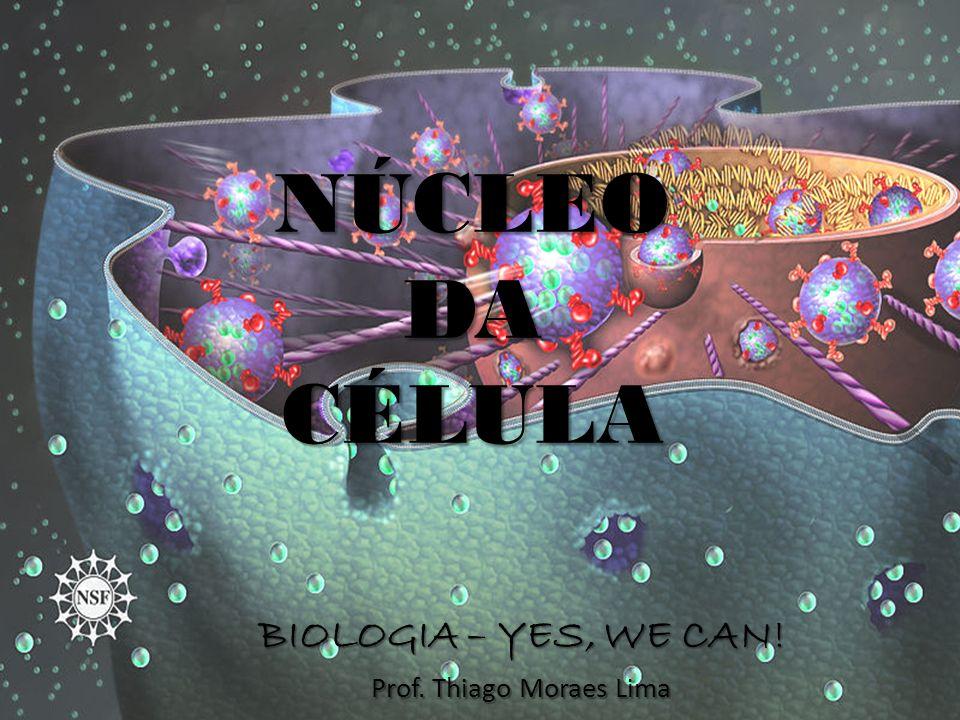 NÚCLEODACÉLULA BIOLOGIA – YES, WE CAN! Prof. Thiago Moraes Lima