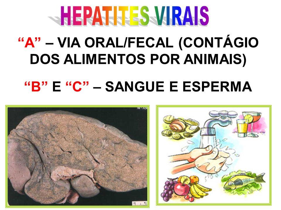 É uma inflamação do fígado.Os culpados pela hepatite são três vírus, chamados de A, B e C.