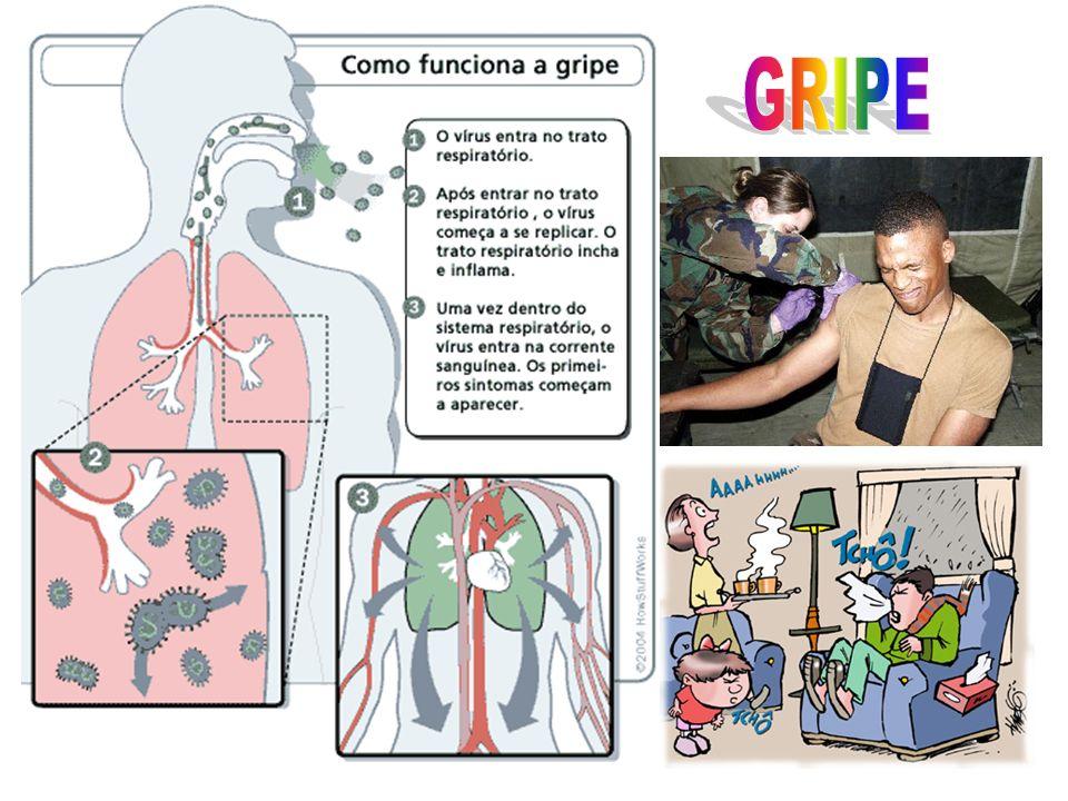 A gripe é uma doença respiratória causada pelo vírus da gripe.